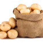 Kartoffeln - Hofladen Wulhorst Waltrop