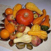 diverse Sorten Kürbisse und Zierkürbisse